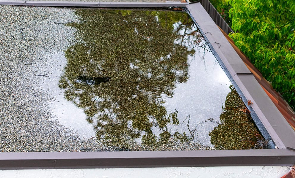How to Stop Water Pooling on Your Flat Roof